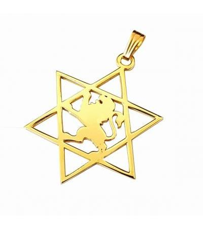 14K Gold Star of David with Lion of Judea
